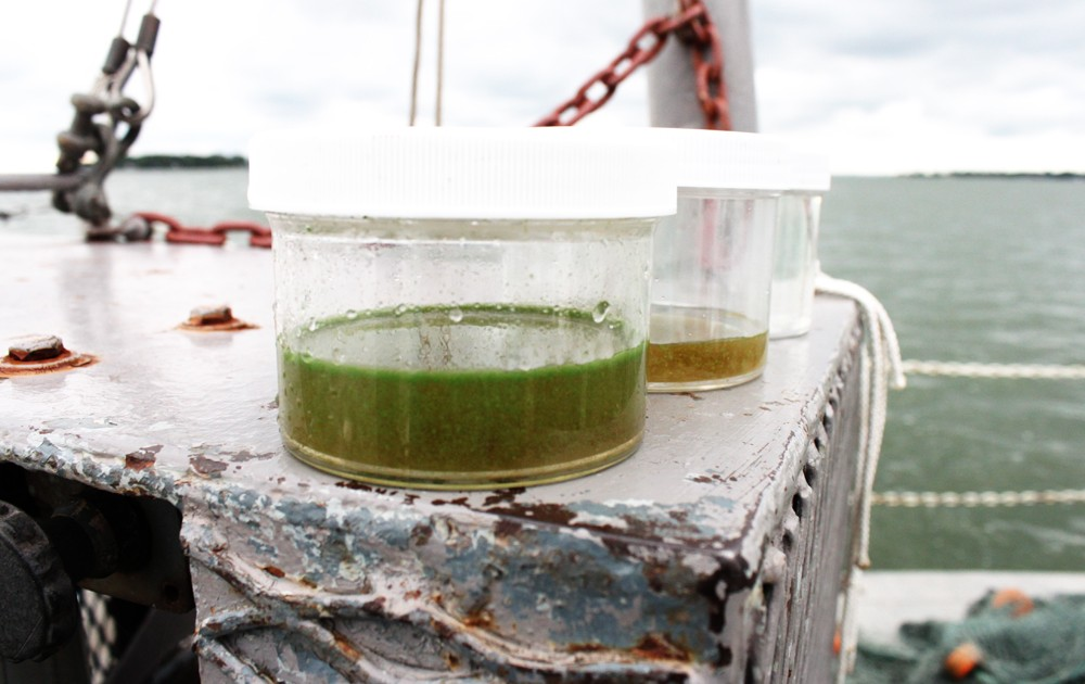 New targets set by Canada and the United States aim to cut the amount of phosphorus flowing into Lake Erie by 40 percent. Photo © Codi Kozacek / Circle of Blue.