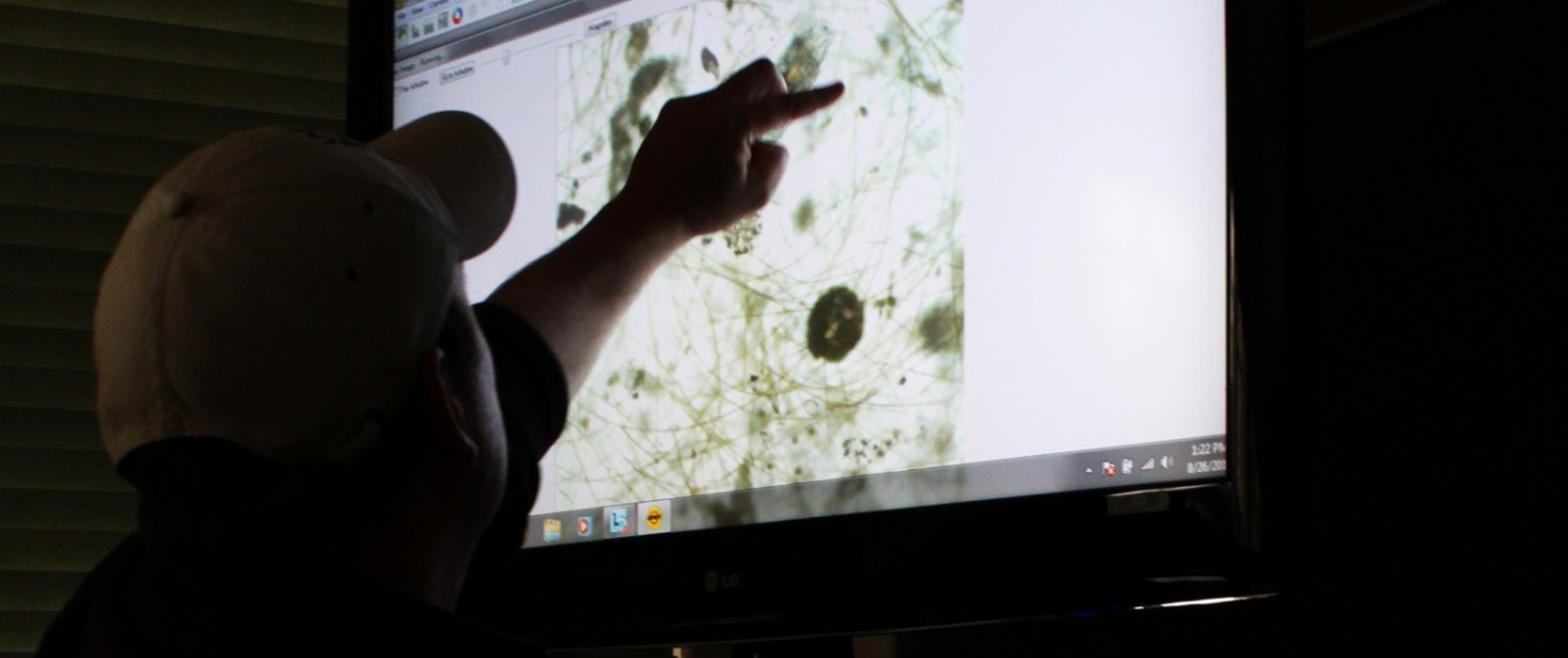 Christopher Winslow, interim director of the Ohio Sea Grant program, points out different types of algae in a sample of water taken from Lake Erie in 2015. Toxins produced by certain types of cyanobacteria, commonly called blue-green algae, shut down water supplies for Toledo, Ohio in 2014. Photo © Codi Kozacek / Circle of Blue.