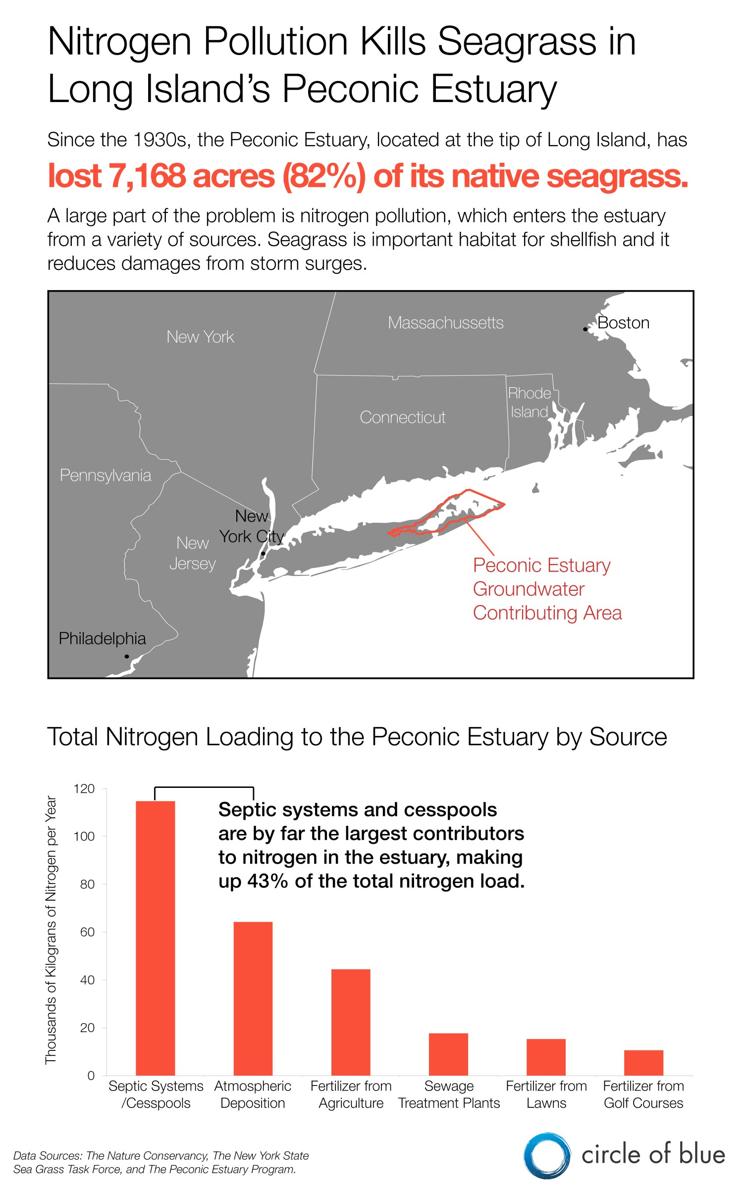 Peconic Bay Long Island seagrass toxic algae nitrogen pollution