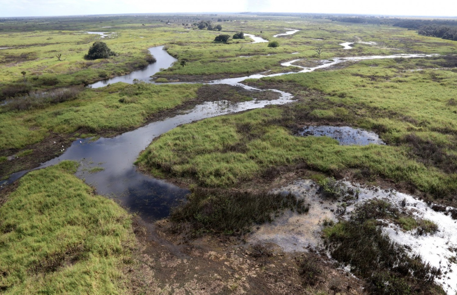 Restoration projects in the Kissimmee River Basin north of Lake Okeechobee are part of larger efforts to reduce nutrient pollution and send clean water south to the Everglades. Photo courtesy Brent Anderson / South Florida Water Management District via Flickr Creative Commons
