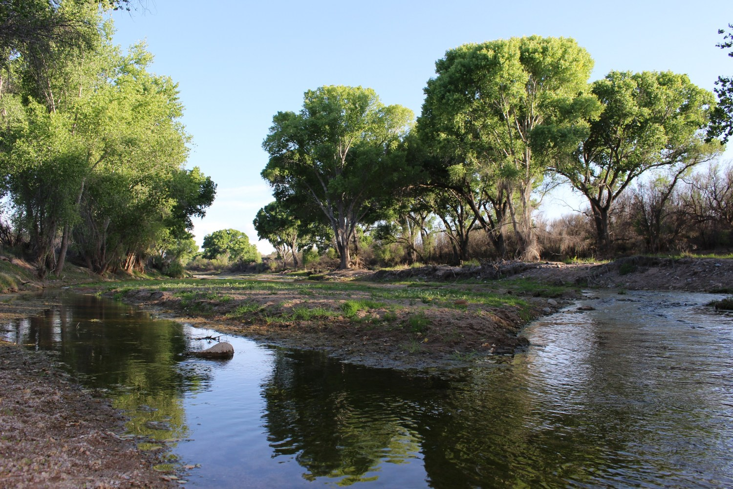 The San Pedro River is fed by groundwater flowing from the San Pedro Aquifer, which spans the U.S.-Mexican border. Through a collaborative research program, scientists are gaining a better understanding of these cross-border aquifers. Photo courtesy of the Bureau of Land Management