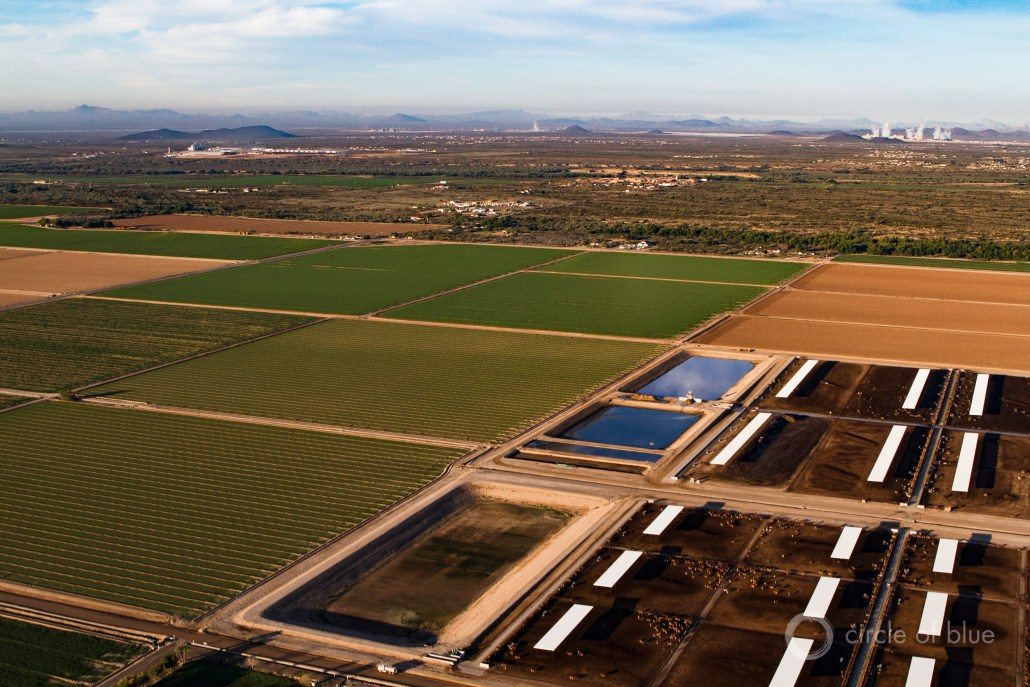 The Central Arizona Project canal is one of the state's most important assets, serving a region where four out of five Arizonans live and providing irrigation water for cities, farms, and tribes. Photo © J. Carl Ganter / Circle of Blue