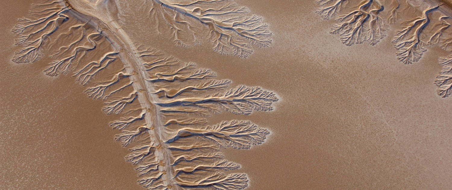 Water channels form fractal patterns in the sands of the delta. Photo courtesy of Wikimedia Commons