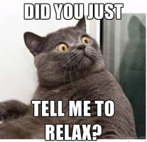 "A cat meme that says ""Did you just tell me to relax?"""