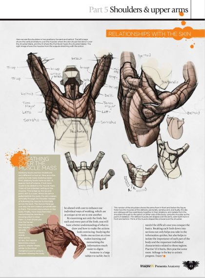 GFX-ImagineFX.Presents.Anatomy.How.to.draw.and.paint.Anatomy.2010_Page_043