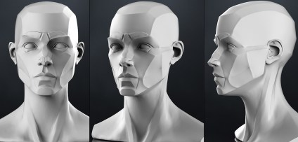 planes_of_the_head_-_female_3d_model