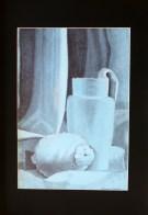 Ileana Morgera - penna biro nera e matita grassa bianca su cartoncino azzurro, cm 35x50