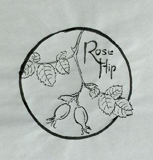 boccioli-rose