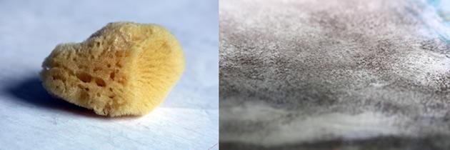 sea-sponge-painting-techniques