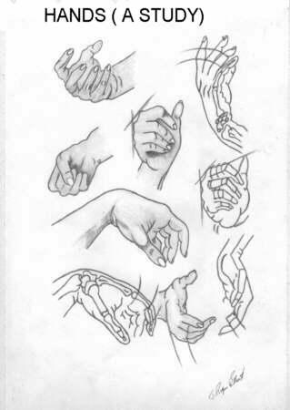 studi di mani