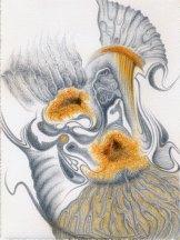 Ammonites de Bourgogne - punta d'argento, acquerello