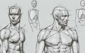 Risorse per il disegno anatomico