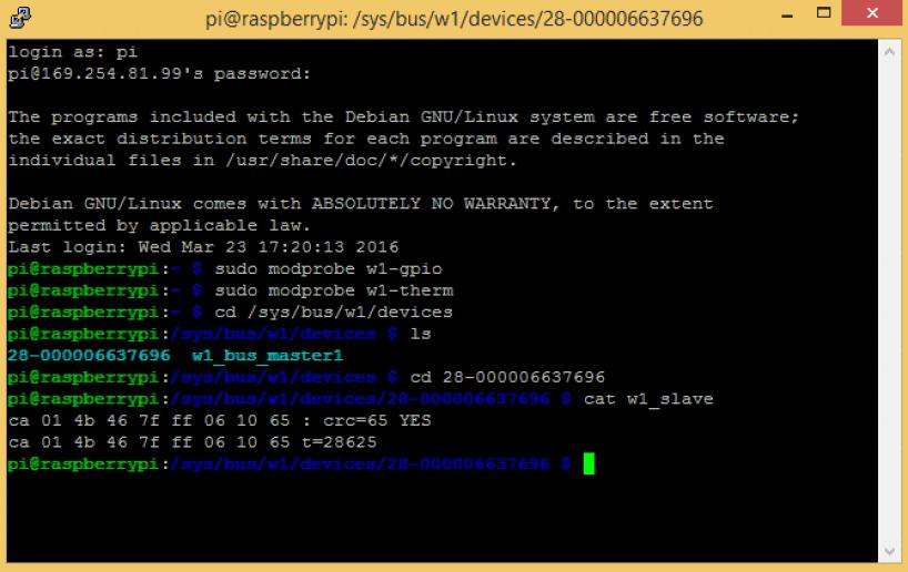 Raspberry Pi DS18B20 Temperature Sensor Tutorial - DS18B20 Raw Output