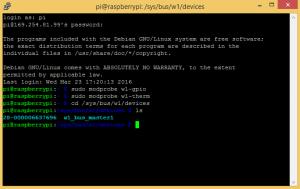 Raspberry Pi DS18B20 Temperature Sensor Tutorial - One Wire Device Address