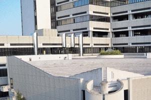 Università delle Marche: Concorso per 9 professori
