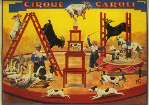 Animaux de la ferme du Cirque Caroli - Encyclopédie du Cirque