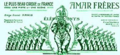Les 16 éléphants du Cirque Amar, Roi du Cirque