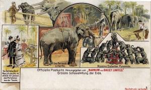 Carte postale de Barnum & Bailey en Allemagne - 1901 au Cirque