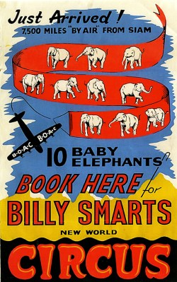 Elephants Billy Smart - Circus Dictionary