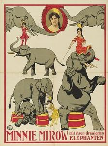 Bulls : Minnie Mirow - Circus Dictionary
