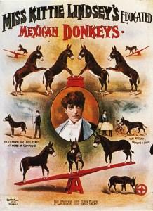 Donkey : Kittie Lindsay - Circus Dictionary