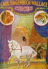 Flic-flac on horseback - Circus Dictionary