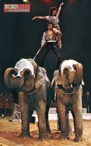 Germaine et Franco Knie - Eléphants