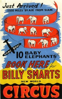 Les éléphants - Billy Smart