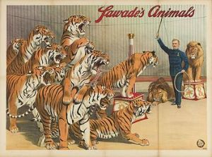 Affiche de Richard Sawade's Animals