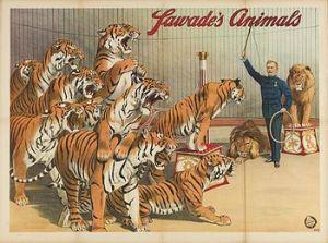 Affiche de Richard Sawade's Animals