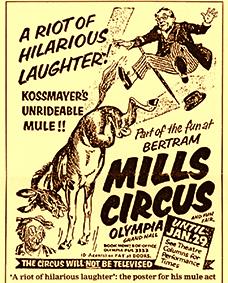 Karl Kossmayer et sa drôle de mule
