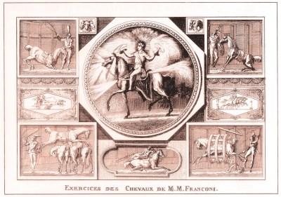 Les chevaux des Franconi - premier Cirque Olympique
