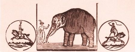 L'éléphant - Jacques Tourniaire