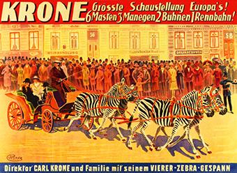 Zebra - Krone