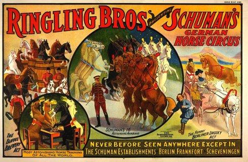 cavalerie A. Schumann chez Ringling