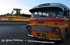 DBY 309
