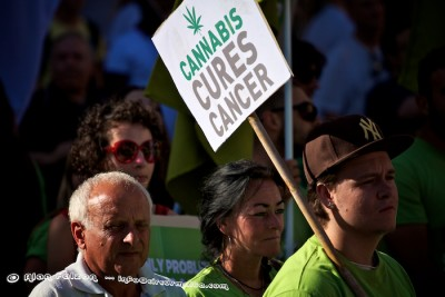 Cannabis Protest,May,2012