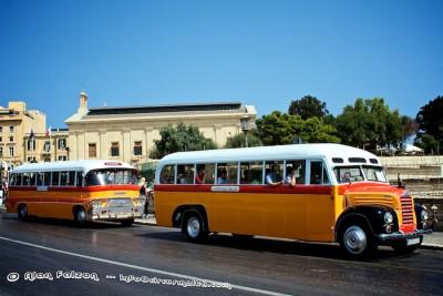 Restored Maltese Bus