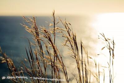 Sun set at Golden Bay