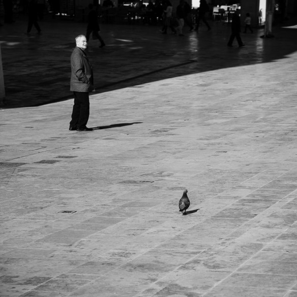 Pigeon and old man, Valletta