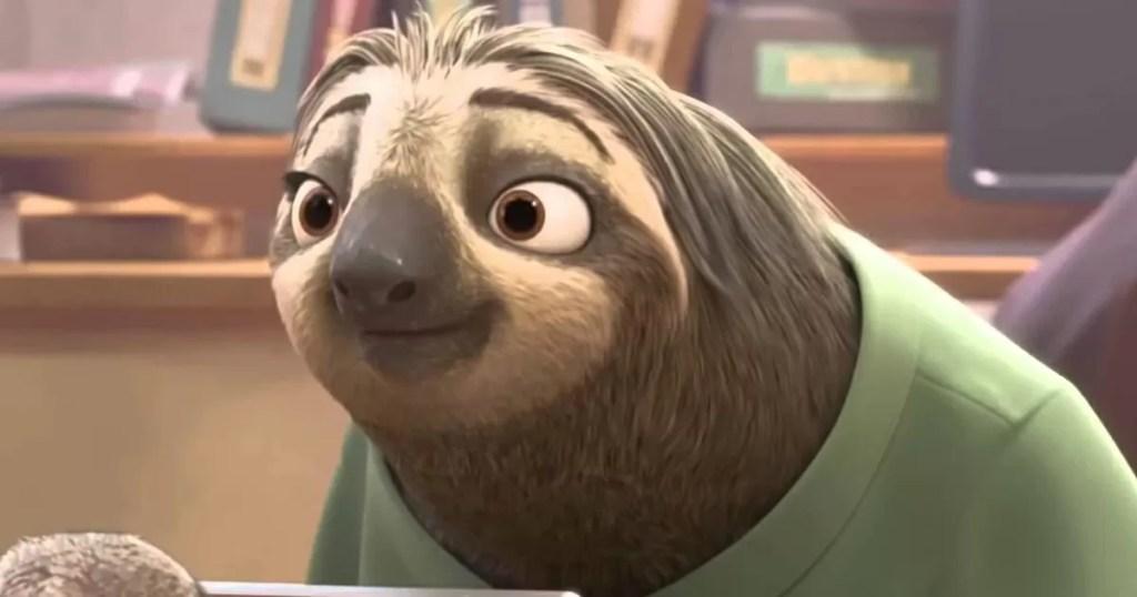 il bradipo insegna a vivere con lenetezza