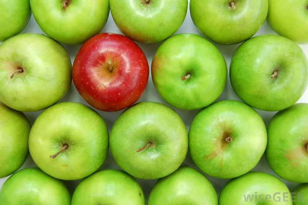 omologazione mele