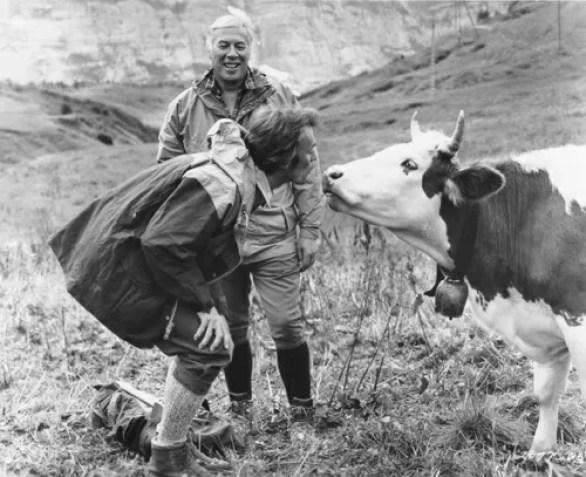 Clint Eastwood bacia una mucca