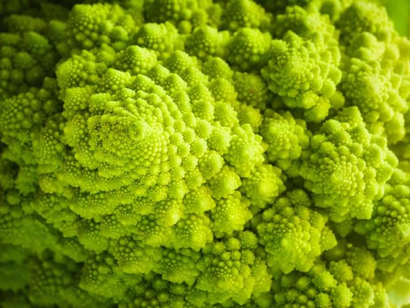 fibonacci proprietà matematiche