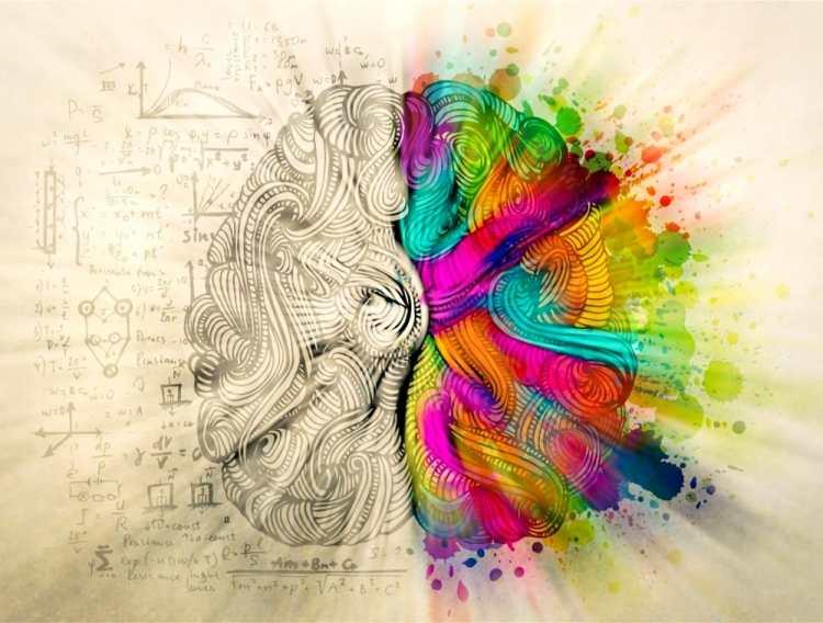 Gestione delle emozioni e autocontrollo