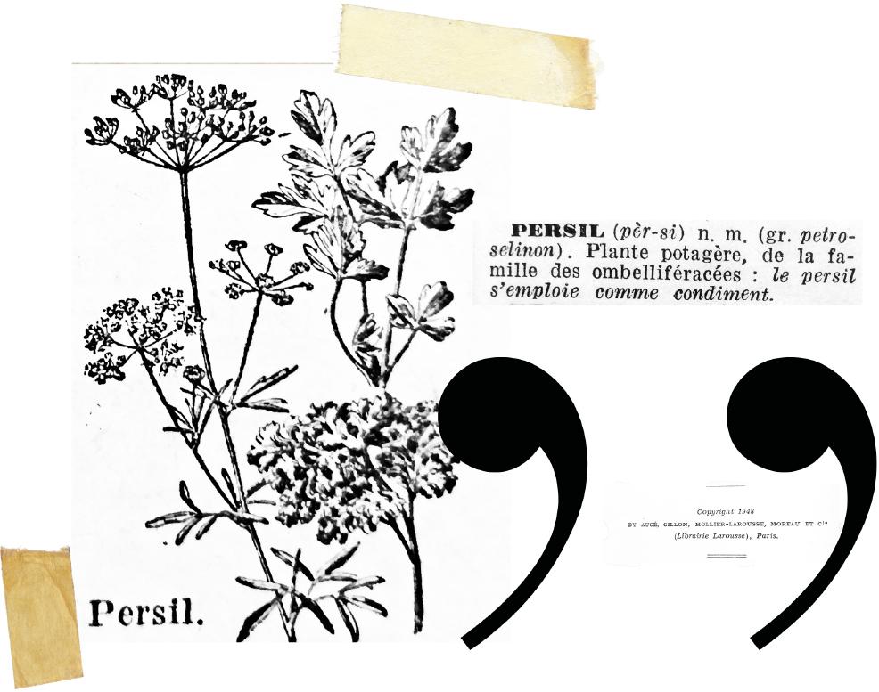 Le numéro estival du Persil est disponible !
