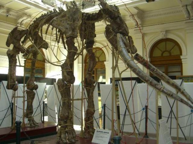 Природонаучен музей на Генуа