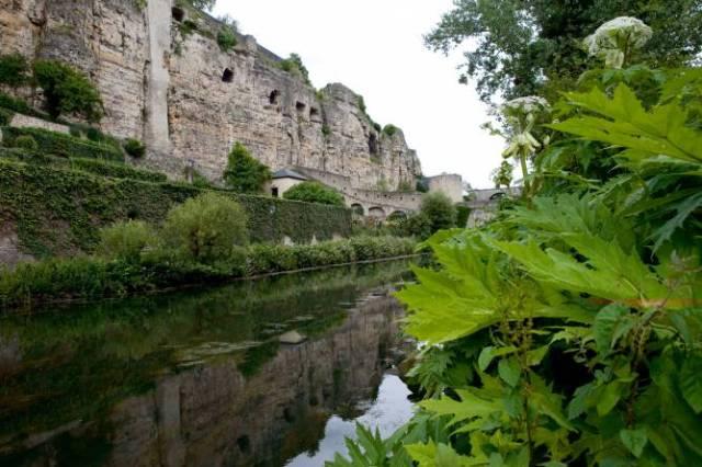 Укрепленията на град Люксембург