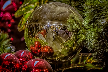 Christmas Selfie © SHaggerty 2012 W-1