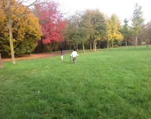 bambino_parco_nord